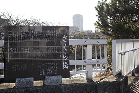海老川ジョギングロード さくら橋の碑(1)