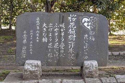 海老川ジョギングロード 桜花植樹一千本記念碑